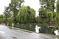 The village pond, Willoughby (1) - geograph.org.uk - 1396003.jpg
