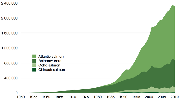 Aquaculture production in tonnes of all true salmon species 1950-2010, as reported by the FAO Time series for global aquaculture of true salmon.png