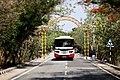 Tirumala - Tirupathi bus (Saptagiri express) Enroute to Tirupathi on Tirumala ghat road (May 2019).jpg