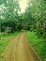 Toranmal Forest Office-2.jpg