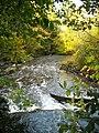 Torrance Linn on Rotten Calder - geograph.org.uk - 1022141.jpg