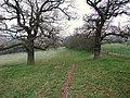 Track down Micklebarrow Hill - geograph.org.uk - 1101528.jpg