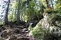Trail Hoellbach Falkenstein.JPG
