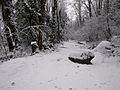 Trail in the back of Heritage Park, covered in snow - panoramio.jpg