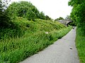 Trans Pennine Trail - geograph.org.uk - 1351118.jpg