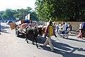 Transport dans la ville de Garoua2.jpg