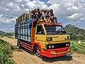 Transportasi truk penebang kayu jati bagi warga desa di Pamotan.jpg