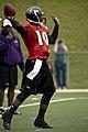 Troy Smith Ravens.jpg
