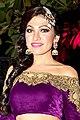 Tulsi Kumar celebrated her first Lohri post-wedding in Delhi (08) (cropped).jpg