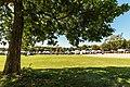 Twin Cities Veg Fest 2017 at Como Park, St. Paul - Vegan Food Festival (37165952735).jpg