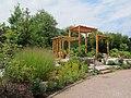 U.S. Botanic Garden in August (23796632615).jpg