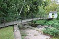 USA - NJ - Mercer - Trenton - Stacy Park - Shaky Bridge 4.JPG