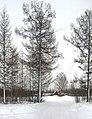 Ulchsky District, Khabarovsk Krai, Russia - panoramio (117).jpg