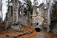Umberg Ruine Aichelberg innen 21012007 43.jpg