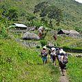 Vallée de Baliem en Papouasie (Indonésie) Trek.JPG
