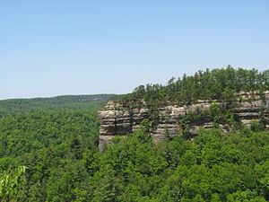 View of Chimney Top Rock.JPG