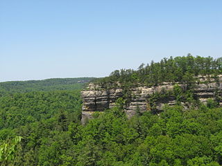 canyon system in Kentucky, National Natural Landmark