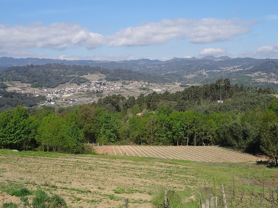 Vista dende Campo Redondo, Ribadavia