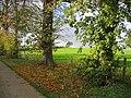 Waddesdon Hill - geograph.org.uk - 88237.jpg
