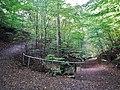 Wanderwege beim Sonnenberg - panoramio.jpg