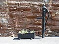 Water pump and trough, Monmouth Hill, Topsham - geograph.org.uk - 1305142.jpg
