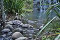 Waterfall (7187450138).jpg
