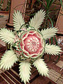 Watermelon carving - flower.jpg