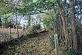 Waymarker for the Wealdway, Hurst Wood - geograph.org.uk - 1571763.jpg