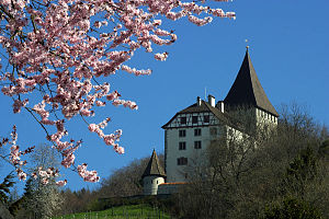 Weinfelden - Privately owned Weinfelden Castle