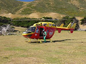 Wellington Westpac Rescue Helicopter - BK117 - Flickr - 111 Emergency (21).jpg