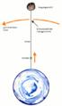 Weltraumlift schema.png