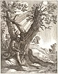 Wenceslas Hollar - The bald man and the fly (State 2).jpg