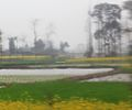 West of Sichuan - panoramio.jpg