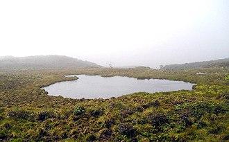 Mount Waialeale - Image: Whylake