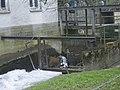 Wind- und Wassermühle Petershagen-Lahde (Wasser).jpg