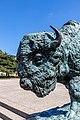 World's Fair Bison Prairie King Humboldt Park Chicago 2020-0649.jpg