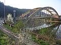 Štěchovický most, ze Štěchovic.jpg