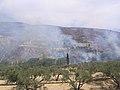 Φωτιά στο Κνωσανό φαράγγι 8662.jpg