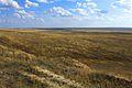 Акбулакская степь - panoramio.jpg