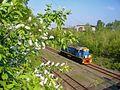 Весна - panoramio (2).jpg