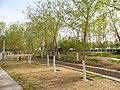 Городской парк СУАР КНР.jpg