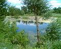 Идолга в Озерном.jpg