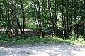 Лукино. Святой источник - panoramio (1).jpg