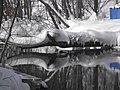 Падающее дерево. Малое Голубое озеро.jpg