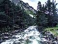 Река в Рила планина.jpg