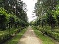 Рубенский парк Rubenes parks (27) - panoramio.jpg