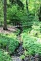 Экологическая тропа, ручей.jpg