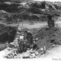 יערות הכרמל צילום טים גידל 1937 (בתוך אלבום יערות הכרמל - נהריה )-PHAL-1620410.png