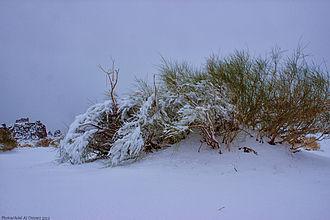 Tabuk, Saudi Arabia - Snow in Tabuk