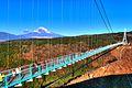 三島スカイウォーク - panoramio (4).jpg